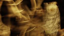Dynamic blur-scops owl