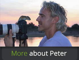 About-Peter-Geraerdts
